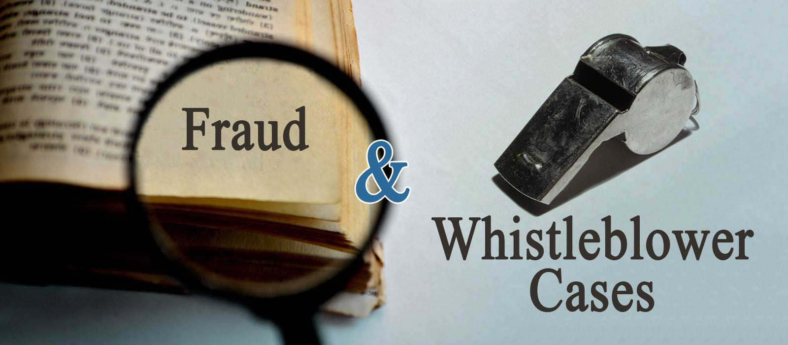 fraud5 Fraud and Whistleblower Cases